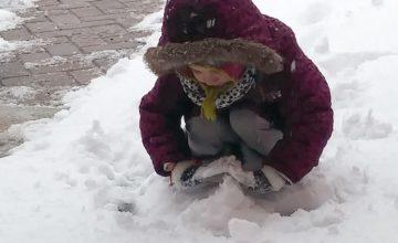 Uscite invernali: si va alla Roggia delle Passere, al nostro amico bosco e nell'orto di nonna Elena